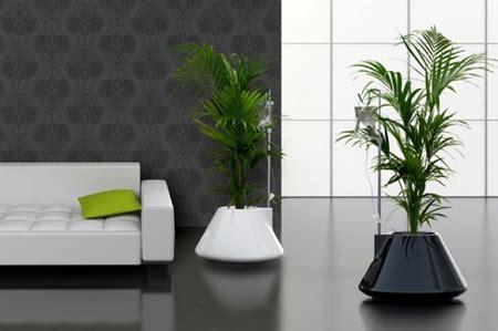 modern houseplants modern and creative plant pot designs