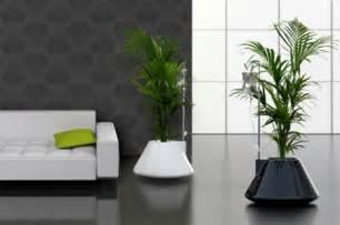 pot plante design modern and creative plant pot designs