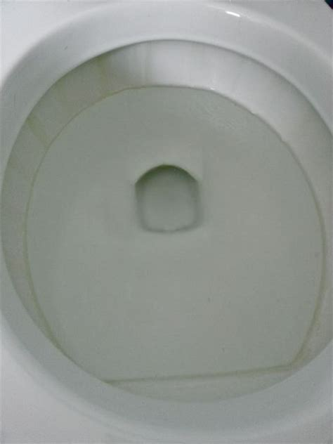 water ring toilet bowl get rid of the lime scale ring in the toilet bowl hometalk