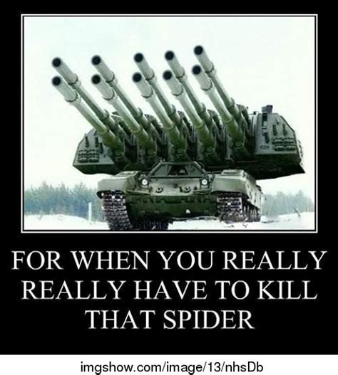 Killing Spiders Meme - i hate spiders overkill know your meme