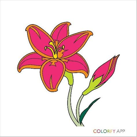 colorfy full version apk nah not really good with colors colorfy app pinterest