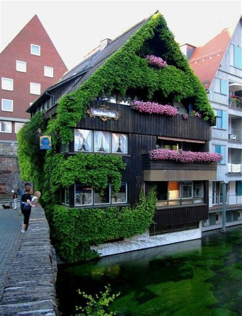 flowerbox deutschland 1000 images about ulm neu ulm germany on