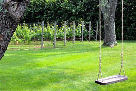 backyard winery htons epicure my backyard winery is a bucket yours