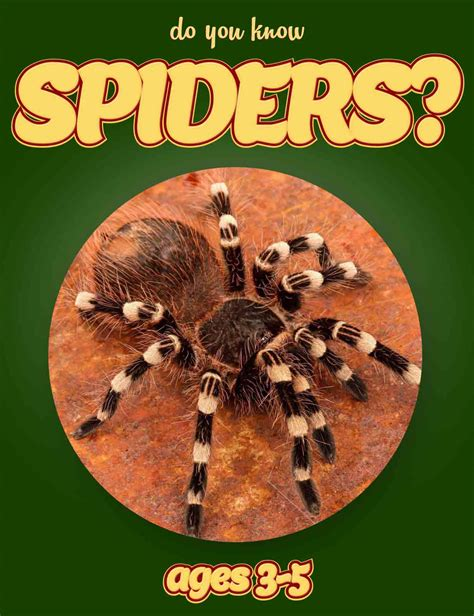 spider picture books spider facts for nonfiction book clouducated