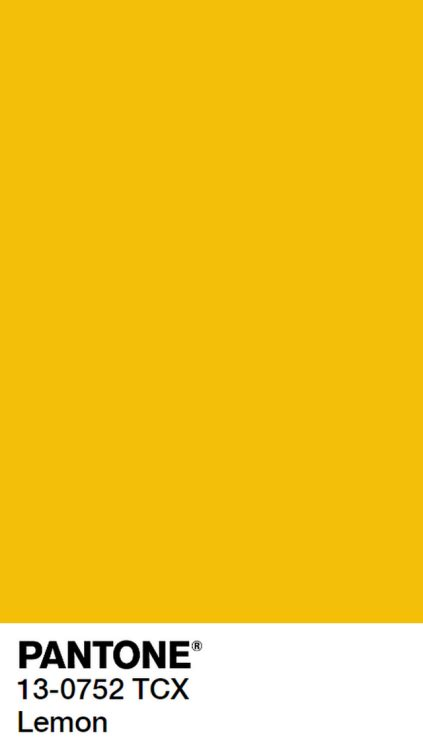 pantone yellow pantone on tumblr