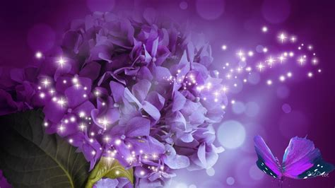 glitter wallpapers of flowers hydrangea sparkle hd desktop wallpaper widescreen high
