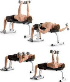 fastest way to increase bench press quickest way to increase bench press 28 images bench press program increase your