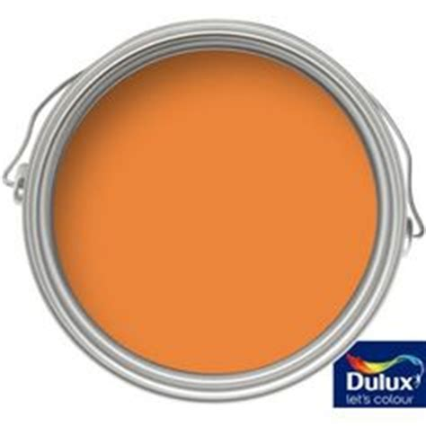 1000 images about living room on burnt orange paint orange living rooms and dulux
