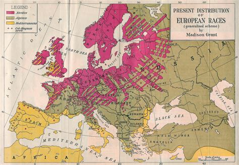 the racial elements of european history books rrie 01 racial realities in europe