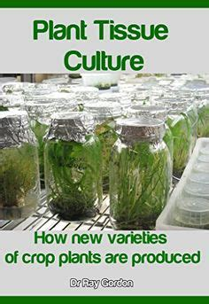 plant tissue culture development and biotechnology books 1000 images about plant tissues cultures on
