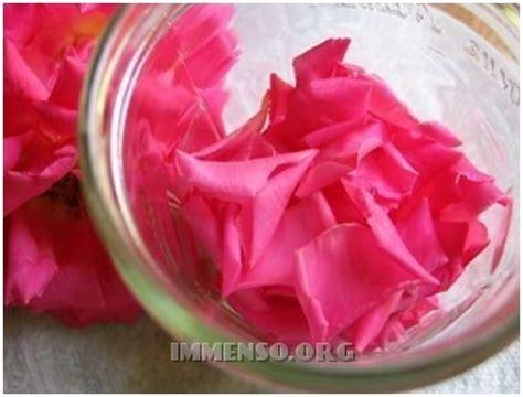 come fare un profumo fatto in casa come fare un profumo con i petali di fiori in casa