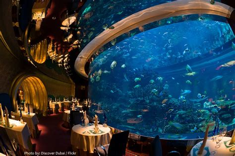 Ambassador Dining Room by Interesting Facts About Burj Al Arab Just Fun Facts