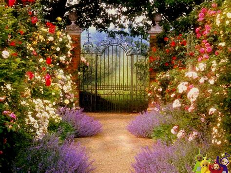 Garden Gate Flowers by The Commonty Beyond The Garden Gate