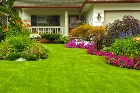 home landscape ideas landscaping ideas for new home construction sites