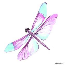 quot watercolor color dragonfly drawing quot stock image and