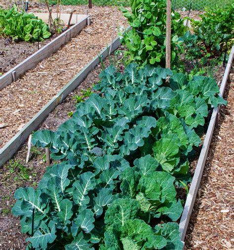 Ph For Vegetable Garden Vegetable Crop Soil Ph Tolerances Harvest To Table