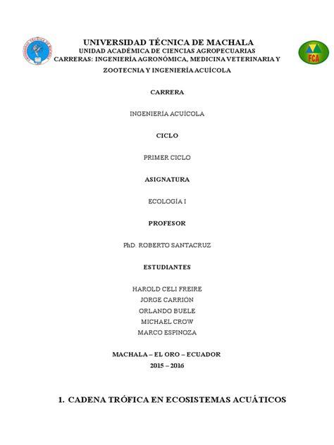 cadenas y redes troficas introduccion informe ecolog 237 a redes tr 243 ficas en ecosistemas acu 225 ticos docx