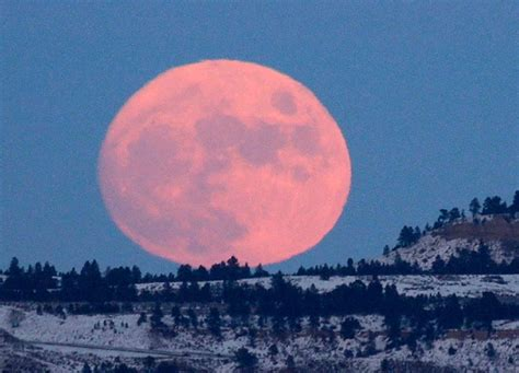 Moon Pink pink moon april 21 22 2016 shifting vibration