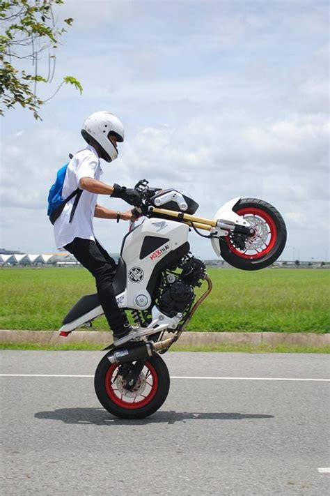 Honda Motorrad Grom by Honda Grom Monkey Bike Motorbikes Nude Beautiful