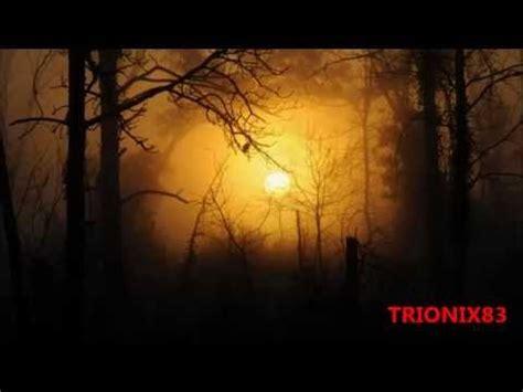 imagenes de paisajes terrorificos bosques tenebrosos del mundo bosques terrorificos y