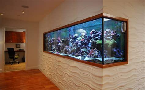 modern aquarium aquarium