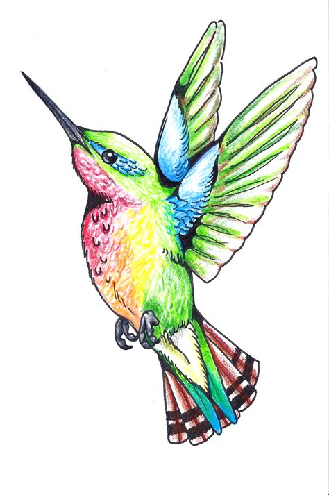 colorful hummingbird tattoo designs tattoos of humming bird humming bird designs
