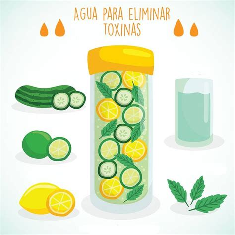 Ada Detox Diet by 23 Best Infograf 237 A Recetas Images On Dia De