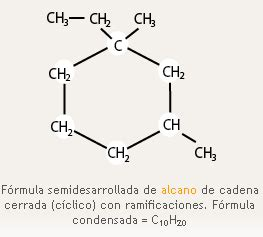 cadenas cerradas ramificadas qu 237 mica 1 2 carbono en los alimentos portal cch