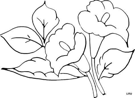 imagenes de flores grandes para pintar en tela flores para pintar en telas imagui