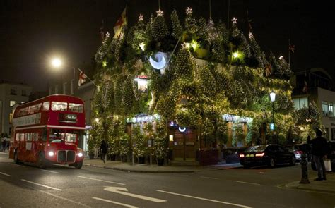 weight 65 kensington fir tree britain s most festive pub boasts 75 trees and 17 000 lights caters