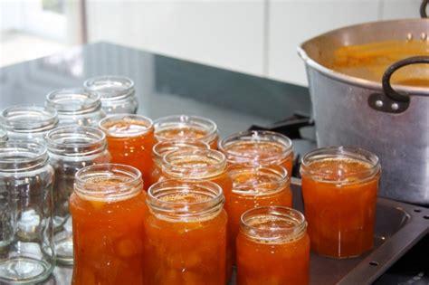 marmellate fatte in casa senza zucchero marmellata di albicocche foto pourfemme