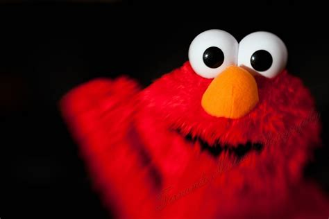 elmo wallpaper images elmo wallpaper collection for free download