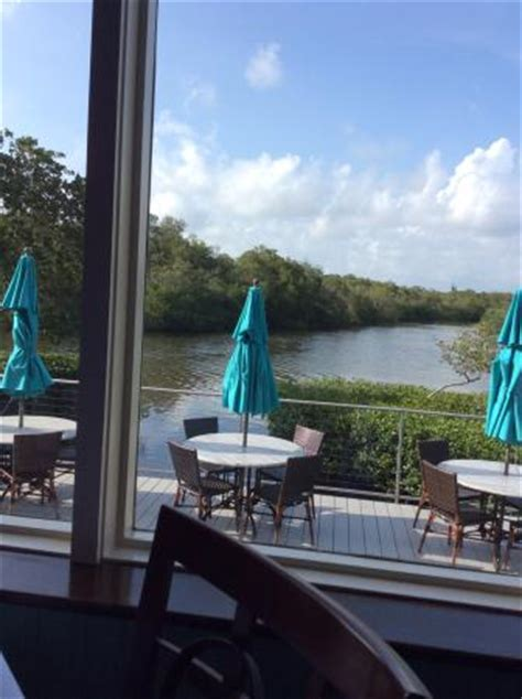 bay house naples photo0 jpg picture of the bay house naples tripadvisor