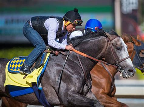 Baffert continues road to success