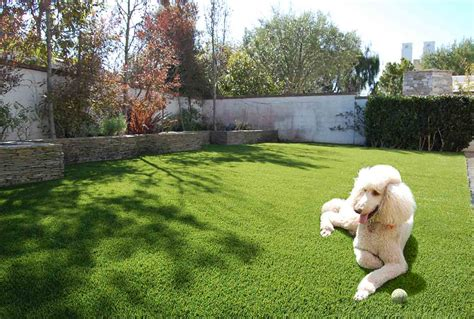 astro turf for dogs artificial turf for pets lawn pros