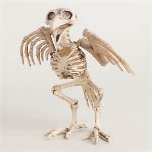 Curtains 90 X 90 Sale Bird Skeleton World Market