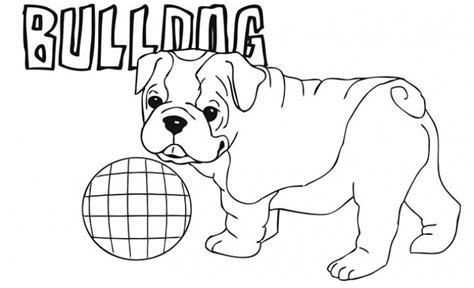 coloring pages of bulldog puppies bulldog animal coloring pages cute little american bulldog