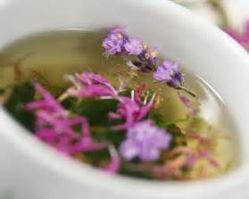 Herbal tea submited images