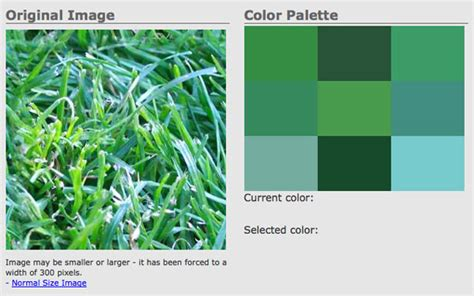 online color palette maker 5 online color palette tools blog color picker tip junkie