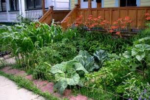Ve always wanted a front yard garden my shaded backyard is ideal for