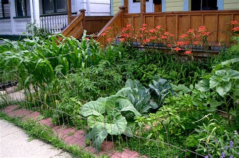 Creating A Backyard Garden by Creating Front Yard Gardens Food Renegade