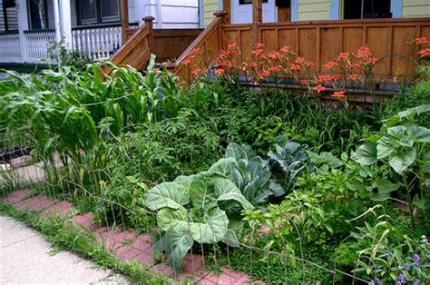 creating a backyard garden creating front yard gardens food renegade