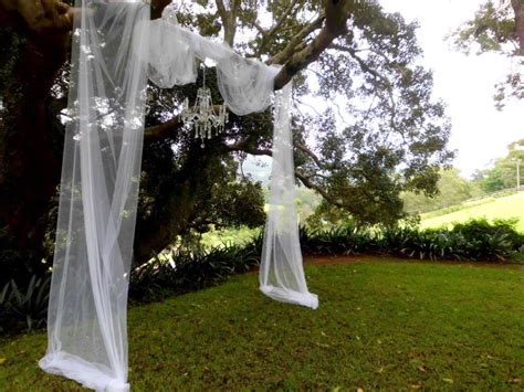 Wedding Ceremony Tree by Ideas For Wedding Ceremonies Sydney Marriage Celebrant