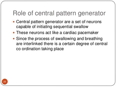 central pattern generator in swallowing physiology swallowing functional investigations of upper git