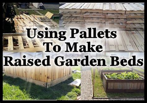 Hometalk   Using Pallets To Make Raised Garden Beds