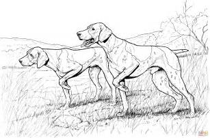 coloring pages of coon dogs coloring pages of realistic dogs pointer dogs coloring