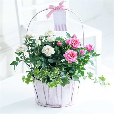 Flowers Free Delivery by Fresh Flowers Free Delivery