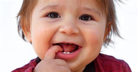 wann kommen welche zähne baby milchgebiss wann kommen babys z 228 hne familie de