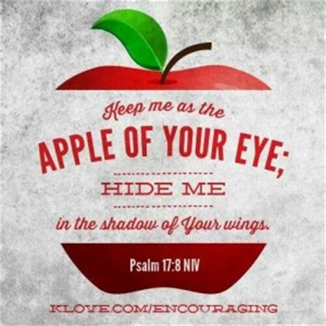 apple of my eye quotes inspirational quotes about apples quotesgram