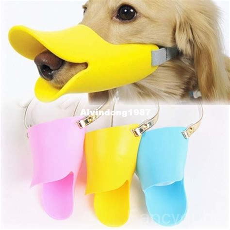 cute dog products 25 best ideas about dog grooming business on pinterest